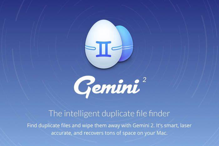 gemini2_001.jpg